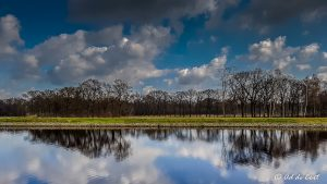 picture of high water in Dutch landscape